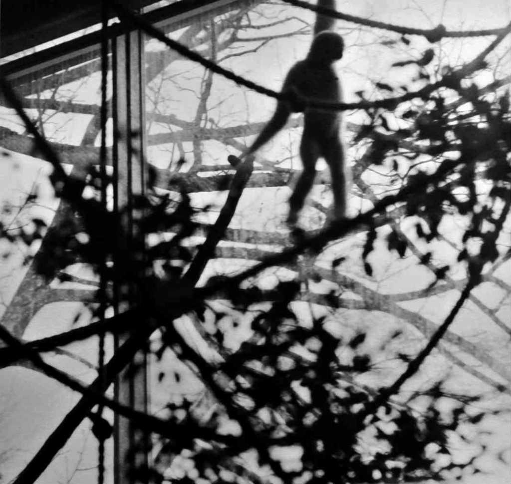 Diana Michener, Anima, Animals, American Season, Maison Europeenne de la Photographies - Photography Exhibition, Paris | Urban Mishmash