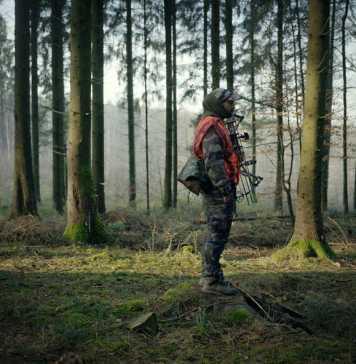 Animer le paysage: Sur la piste des vivants